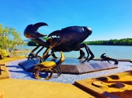 Krabi goes Crabby