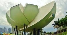 Lotus Theatre